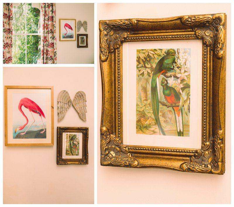 quetzal-bird-print.jpg
