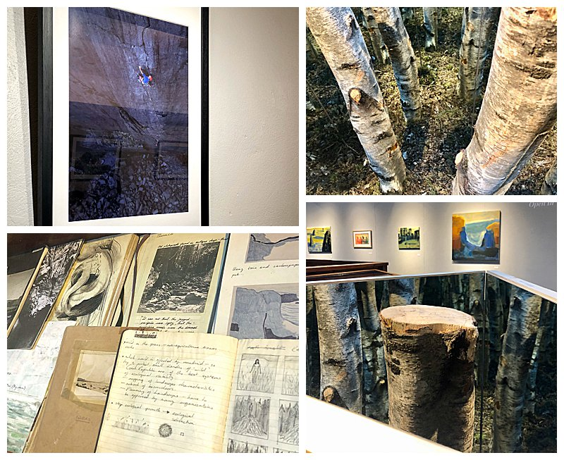 Festival-Art-Exhibitions